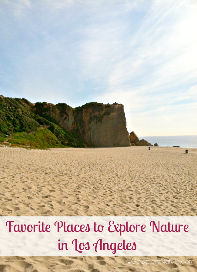 This list of our favorite places to explore nature in Los Angeles provides a sneak peek at all there is to see and do outdoors in LA.