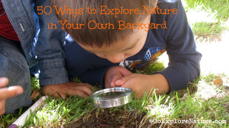 50 Ways to Explore Nature in Your Own Backyard - Featured
