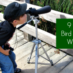 Bird Watching with Kids - featured