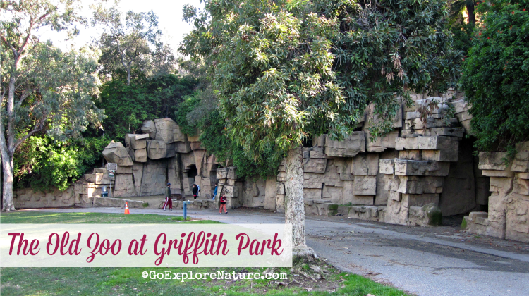 The Old Zoo at Griffith Park is a gem of a picnic spot with minimal crowds. Families will enjoy the open space with lots of opportunities for nature play.