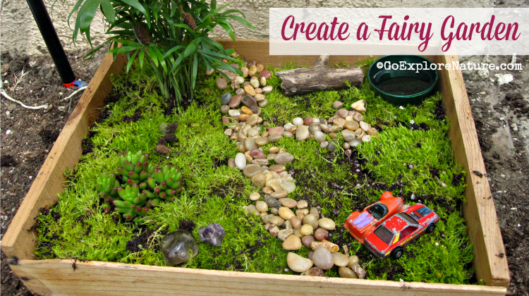 Fun Friday Create a Fairy Garden GoExploreNaturecom