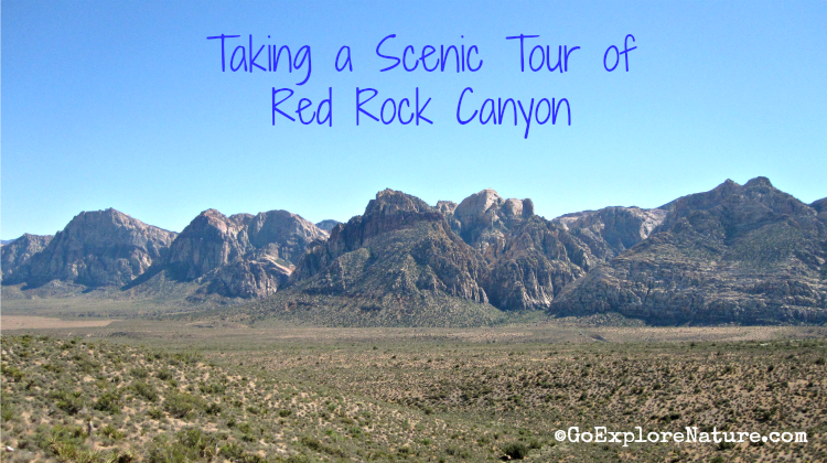 Red Rock Scenic Tour - Featured