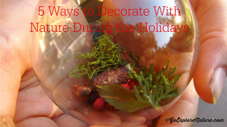 5 Ways to Decorate With Nature - Featured