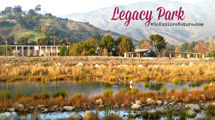 The 15-acre Legacy Park is a sort of central park in the heart of Malibu – perfect for some quiet time in nature right in the heart of the city.