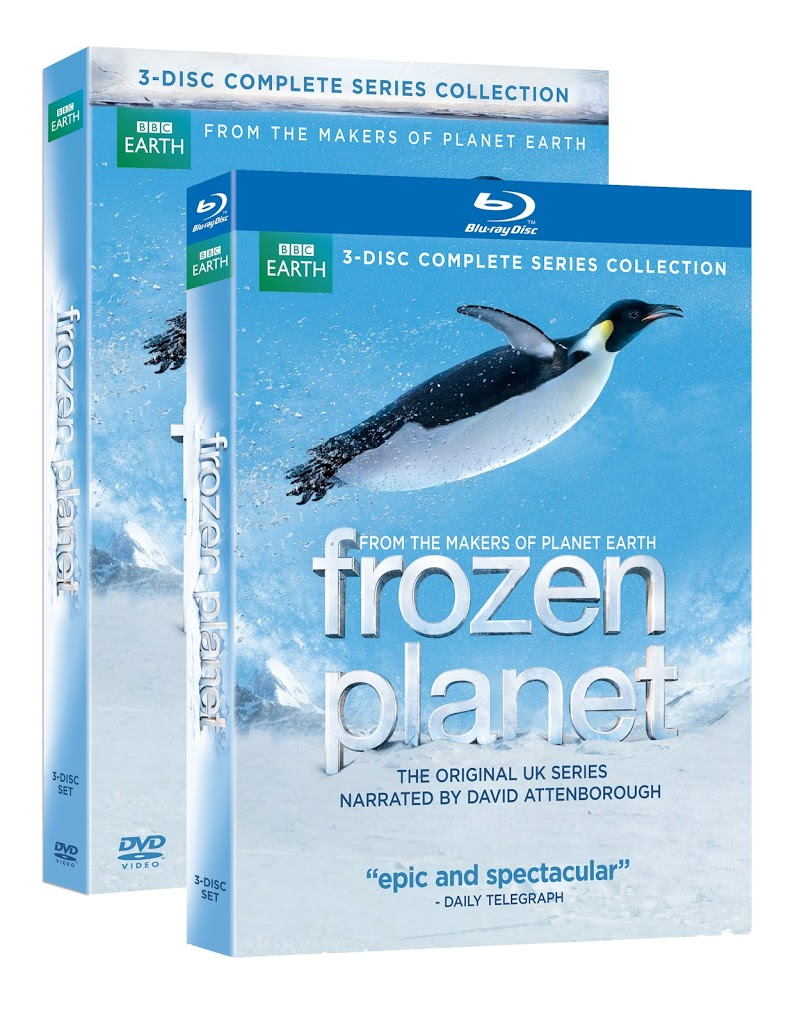 dvd review frozen planet goexplorenature com