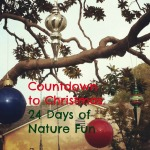 Countdown to Christmas: 24 Days of Nature Fun