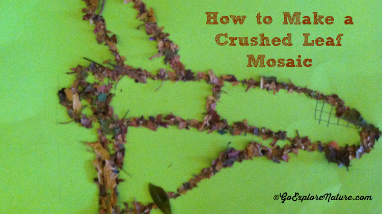 Crushed Leaf Mosiac - Featured