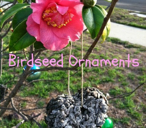 Bird-seed-ornament-pink