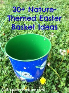 30+ nature-themed Easter basket ideas