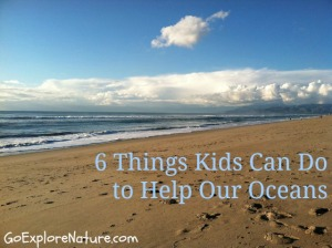 6 things kids can do to help our oceans