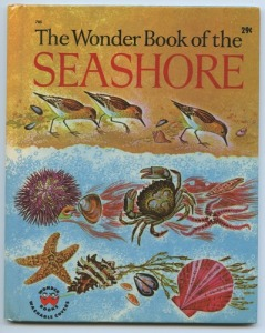 The Wonder Book of the Seashore