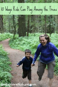 10 ways kids can play among the trees