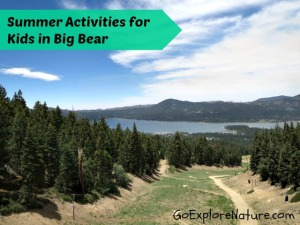 Summer Activities for Kids in Big Bear