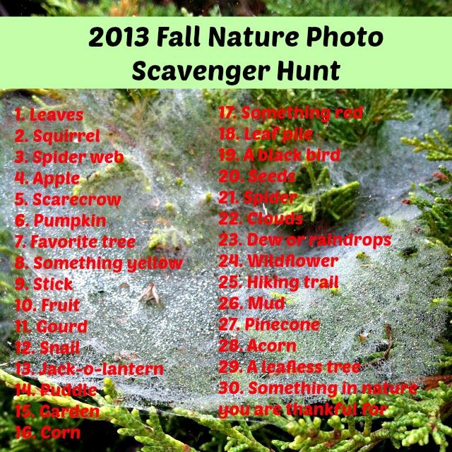 Fall Backyard Scavenger Hunt : 2013 Fall Nature Photo Scavenger Hunt  GoExploreNaturecom