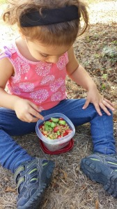 Trail Meals for Kids
