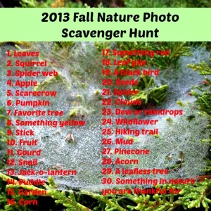 Fall Nature Photo Scavenger Hunt