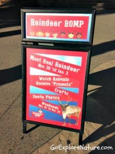 Reindeer Romp at the Los Angeles Zoo
