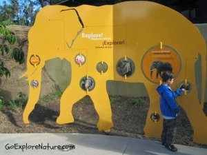 Family Fun at the Los Angeles Zoo