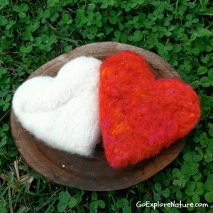 9 Valentine Nature Crafts for Kids