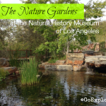 Family Friendly Gardens in L.A.: The NHMLA Nature Gardens