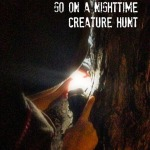 Fun Friday: Go on a Nighttime Creature Hunt