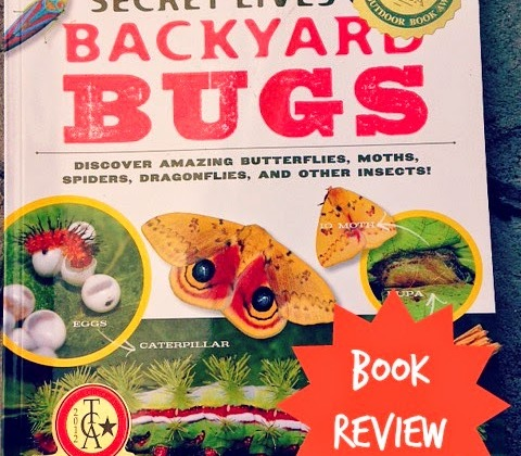 our library the secret lives of backyard bugs