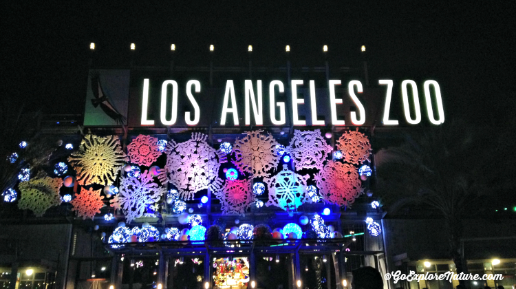 LA Zoo Lights - Featured