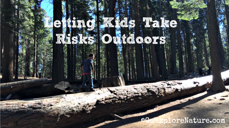 Letting Kids Take Risks Outdoors - Featured