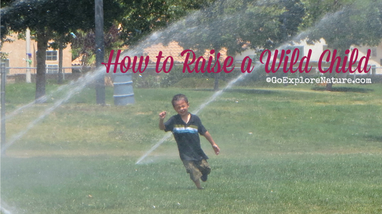 Book Review: How to Raise a Wild Child