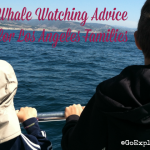Whale Watching Advice for Los Angeles Families