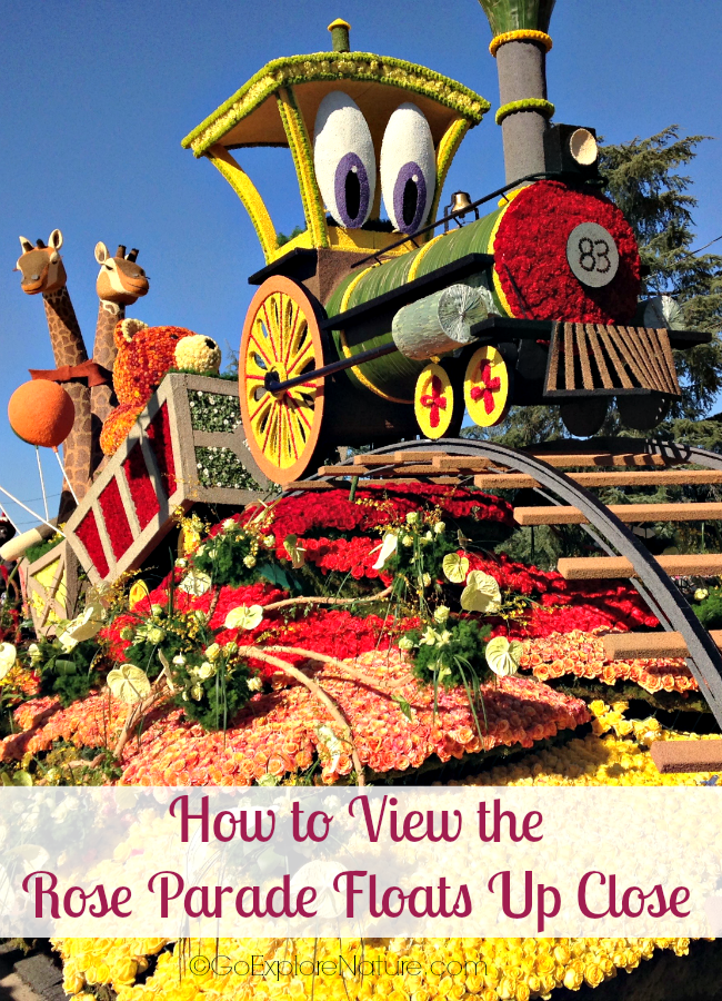 If you want to know how to view the Rose Parade floats up close, here's my advice: Go see the floats on display in the days following the Parade.