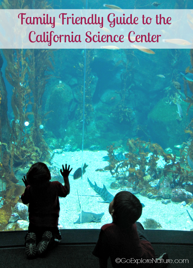 This family friendly guide to the California Science Center in Los Angeles is packed with tips to help you plan the perfect day trip with your kids.