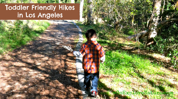 Toddler-Hikes-Featured-750x420