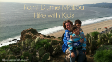 This easy Point Dume Malibu hike with kids offers views of the Santa Monica Bay, migrating gray whales in winter, wildflowers in spring and more.