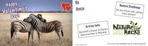 Nature Valentine cards