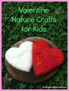 9 Valentine nature crafts for kids