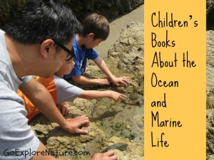 Children's Books About the Ocean and Marine Life
