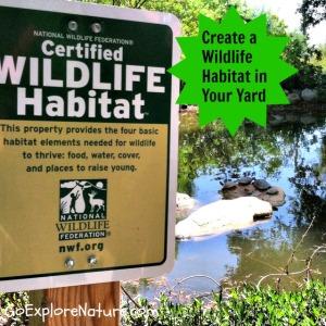 Create a wildlife habitat in your yard