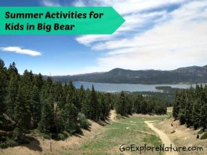Summer Activities for Kids in Big Bear