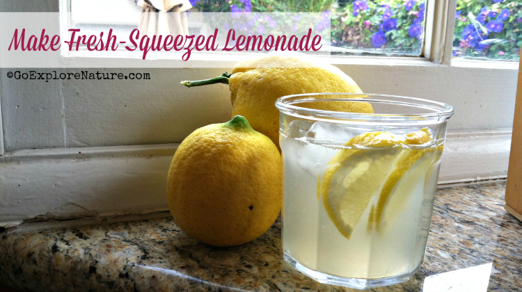 What better way to kick off summer, really, than to make fresh-squeezed lemonade? Here's how to get the whole family in on the process.