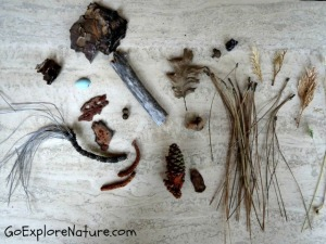 Time to Create: Natural Materials