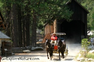 Pioneer Yosemite History Center