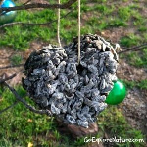 Birdseed Ornaments