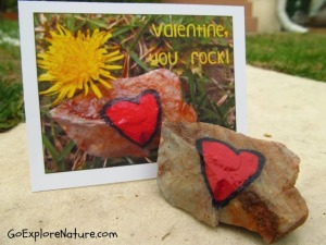 Our Nature-Inspired Valentine